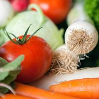 AFRISO Kantine Gemüse